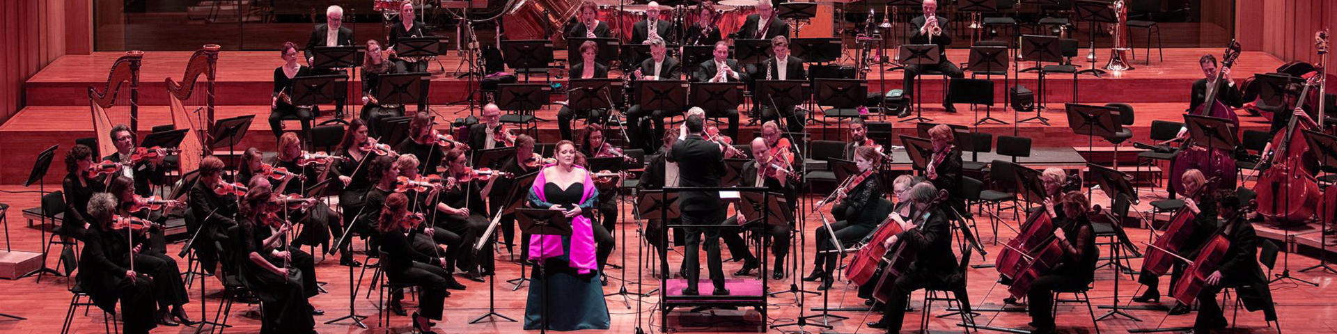 Het Gelders orkest - Eric Vloeimans