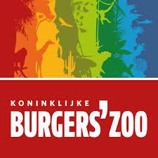 Burgers' Light!
